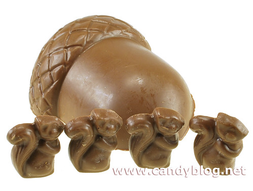 Chocolate Squirrel Filled Chocolate Acorn