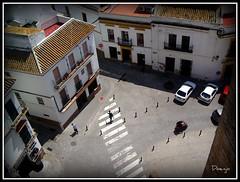 Mirando abajo (Doenjo) Tags: espaa geotagged sevilla andaluca alczar carmona doenjo retofs1 lmdd