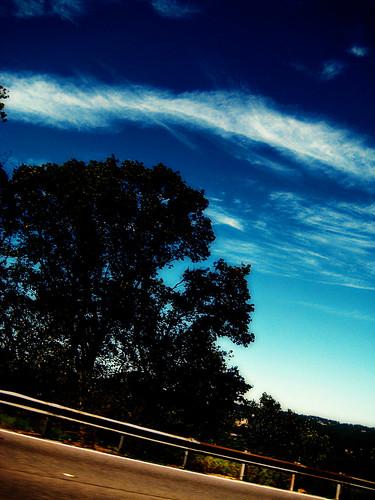autumn drive.