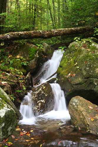 unnamed falls #4 on FR 63