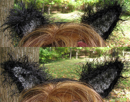 Black and Grey Cat Ears (closeup)