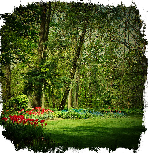 floral landscape 2