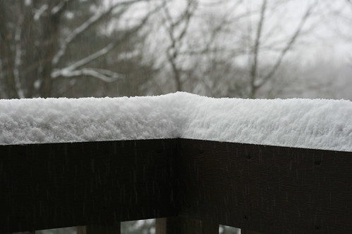 Why, Yes, It Did Snow Today