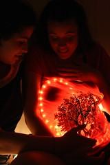 plantar un libro (Analía Acerbo Arte) Tags: mujer árbol mujeres embarazo semilla