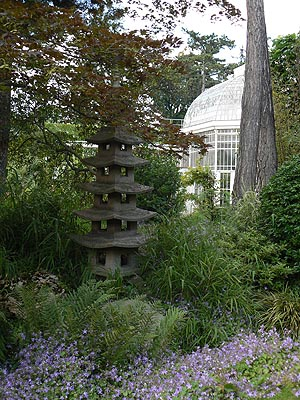pagode et serre.jpg