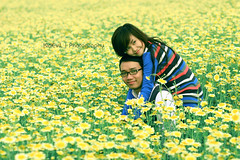 leo&map (Bnh.KidEviL) Tags: flower 20d love canon leo map ron cuc loi bung kidevil