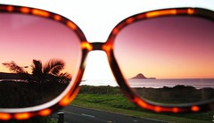 La Vie en Rose (ainsds) Tags: road sunset summer sun mountain beach print glasses purple sunny palm sunnies leapoard ohope