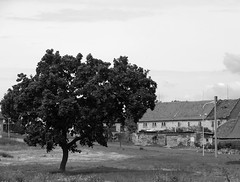 old village (haesy) Tags: old blackandwhite village czechia ancienttimes
