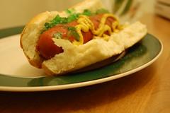 food hotdog mustard