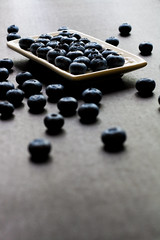 blue sunday evening (bitzi  ion-bogdan dumitrescu) Tags: blue food white black fruits fruit vintage healthy dof small plate blueberry health blueberries bitzi ibdp mg5985 backgrounddark findgetty ibdpro wwwibdpro ionbogdandumitrescuphotography