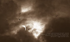 phenomenon............ [Solar Eclipse, Dhaka, Bangladesh]