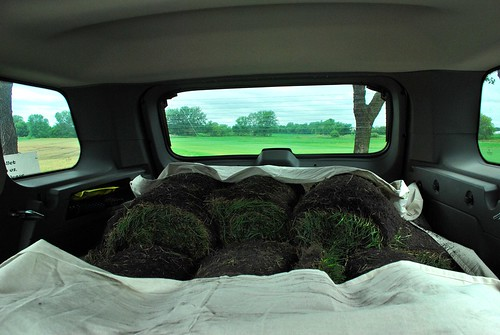 sod in jeep