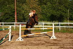 Horse jumping (*Maren*) Tags: horse norway jumping equestrian kristiansand vestagder