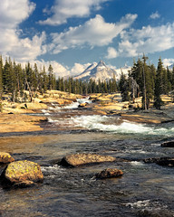 Yosemite High Country (Amery Carlson) Tags: california mountain tree nature forest nationalpark nikon bravo stream yosemite cascade tuolumneriver d700