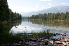 Lac Beauvert (bradmohr) Tags: vacation canada alberta jaspernationalpark lacbeauvert whistlersmountain