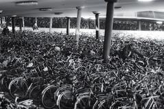 This is why all our carparks are empty. (Guido Musch) Tags: blackandwhite netherlands nikon zwartwit nederland bikes groningen fietsen fiets bikepark 50mm18 fietsenstalling d300 seriese hoofdstation guidomusch idontreallylikethedofofthisphoto itstooshallow