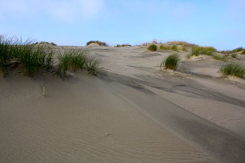 Curonian Spit - Neringa - 107