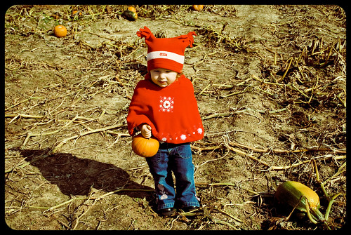 Pumpkin Patch 10/2009