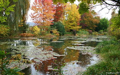 Autumn's colors (DulichVietnam360) Tags: voyage travel autumn france reflection nature canon garden french jardin monet reflexion giverny claudemonet thu peintre impressionisme hautenormandie autome vn jardindemonet bng php thinnhin canon400d anawesomeshot earthhome autumnsreflection dulichvietnam360 phnchiu vnmonet bngnc danhhamonet trngphintng jardindeclaudemonetgiverny
