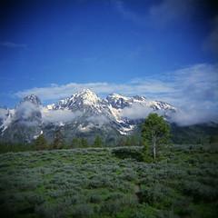 015 (informedmindstravel) Tags: park mountains holga grand national wyoming teton