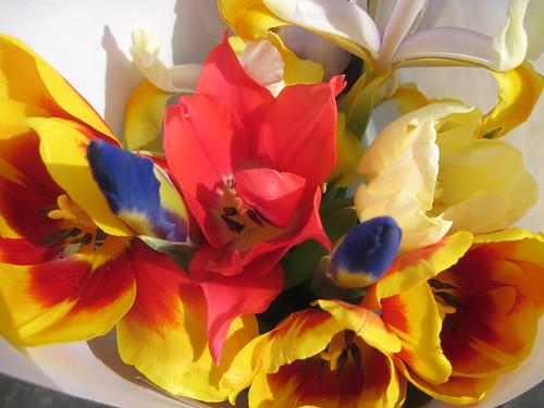 Greenmarket Flowers for the Host