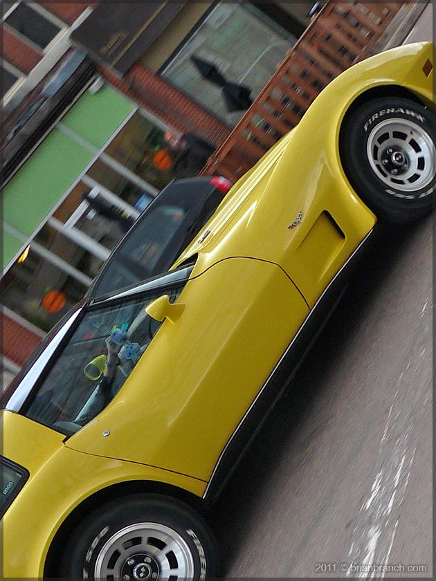 P1150143_corvette