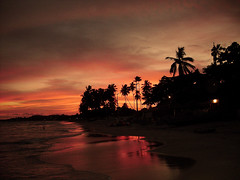 Summer Vacation/Northeast Brazil (marcnunes) Tags: sunset brazil sun beach tropical maragogi