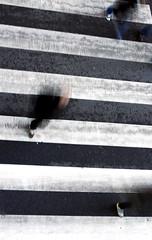 Three feet (Leandro MA) Tags: valladolid pasodecebra trespies canoneos40d leandroma