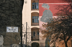 Rzsk tere / Square of Roses (sonofsteppe) Tags: street old city pink windows winter red urban detail building tree art wall fence grey daylight wire mural hungary exterior outdoor bare painted budapest nobody retro explore series 60mm ochre exploration streetname twiggy bough streetplate wallscape sonofsteppe pusztafia erzsbetvros rzsktere utcatbla streetplatesofbudapest squareofroses urbanlifeoftrees