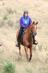 IMG_EOS 400D DIGITAL2009015395 (David F-I) Tags: horse equestrian horseback horseriding trailriding trailride ctr watrc wellingtonareatrailridingclub competitivetrailriding pikarere sporthorse equestriansport january2009 pikarere2009 competitivetrailride