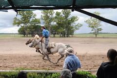 Gauchos (Marco P. Sanchez) Tags: gauchos touristtrap thehorseridewasfunatleast theyservedwineattheentrance