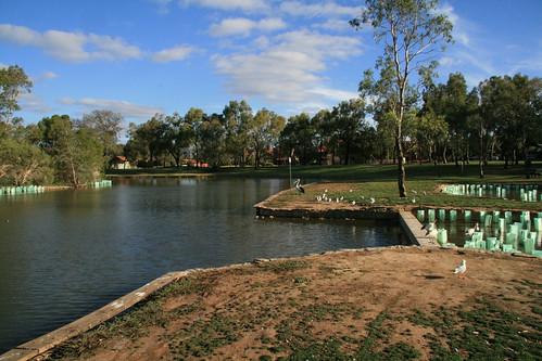 Duck pond at Oakden