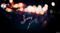 Blindsided | 121.365 (Stephan Geyer) Tags: road street warning canon dubai dof cone bokeh 85mm line 5d canon5d canoneos5d project365 8512 85l ef85mmf12lusm 5dclassic canon5dclassic