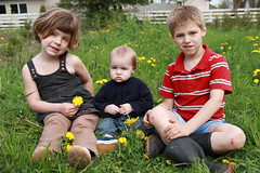Beware the Bugs (amberlynnlane) Tags: baby green nature kids rural outside weeds boots farm bugs dandelion peter greass scrapedknees