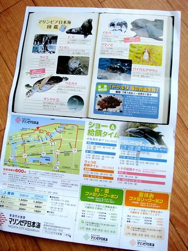 マリンピア日本海のチラシ
