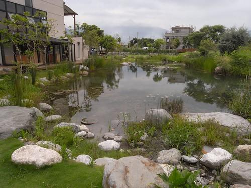 你拍攝的 22生態池。
