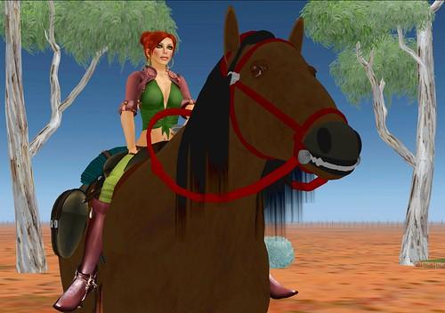 Aussie Horse Ride