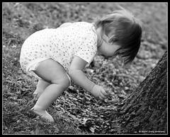 Walnut Collector (Cygnus~X1 - Visions by Sorenson) Tags: family summer portrait blackandwhite bw usa baby white black tree girl grass standing canon outdoors eos backyard fb candid indiana bark 2009 monon freestanding whitecounty 50d ef70200mmf28lisusm belah whitecountyin craigsorenson 20090718040330z