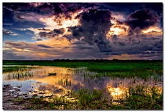 monsoon madness - 1 (Soumya Bandyopadhyay) Tags: sunset sky cloud reflection rural wide monsoon drama bengal gradnd superaplus aplusphoto pentaxk200d pentax1855mmii