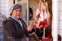 Kurdistan kurds (Kurdistan Photo ) Tags: landscape photojournalism loves kurdistan naturesfinest platinumphoto flickrdiamond naturewatcher kurdistan2all kurd4ever fiveflickrfavs kurdpopular  kurdistan4all kurdistan2008 natureselegantshots travelandscapes sefti simplythebest~flowers kurdistan2006 flickraward kurdistan2009