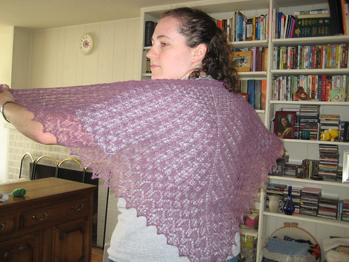 Purple Pangea Shawl