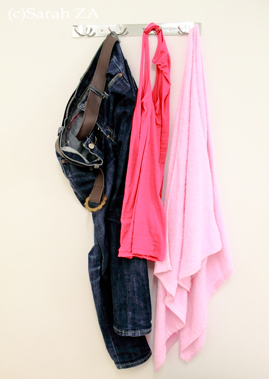 Wall Clothes Hanger