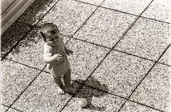 Primi calci - first kicks (scanavacca1986) Tags: shadow bw playing film 35mm blackwhite child terrace squares ombra photojournalism bimbo yashica bianconero terrazzo bambino ilfordfp4 pellicola giocare fotogiornalismo quadrati yashicafr scanavaccaphotography scanavacca1986 scanavaccaalessio fotografiadireportage