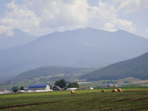 Field & mountains