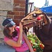 Poor victim attacked by Bristol Horse