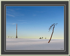 (0002)  Natur und Technik - Nature and Technics (EnDe53) Tags: schnee winter snow tree tower nature germany deutschland tour hiver natur technics technik neige dali badenbaden 1001nights turm allemagne schwarzwald blackforest baum singletree technologie hornisgrinde badenwrttemberg foretnoire seebach colorphotoaward arbreseul 100commentgroup artofimages einzelnerbaum ennodernov 1001nightsmagiccity