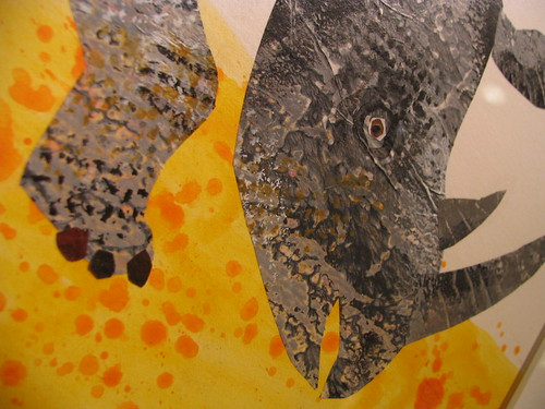 Rhino Toenails