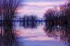 Reflections (ppolgar) Tags: reflections nikon smörgåsbord petrieisland nikond2x mywinners rubyphotographer orleansontario mtrtrophyshot