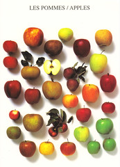 Nouvelles Images Apples Postcard (crayolamom) Tags: postcard forum postcrossing apples nouvellesimages privateswap