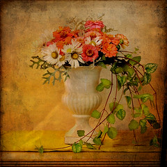 floral renaissance (anniedaisybaby) Tags: thanksgiving flowers autumn texture urn vines thankyou l